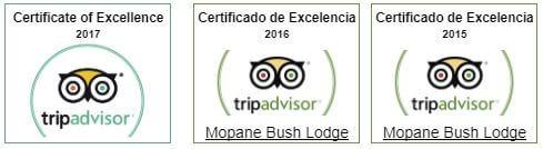 certificate-of-excelence-tripadvisor